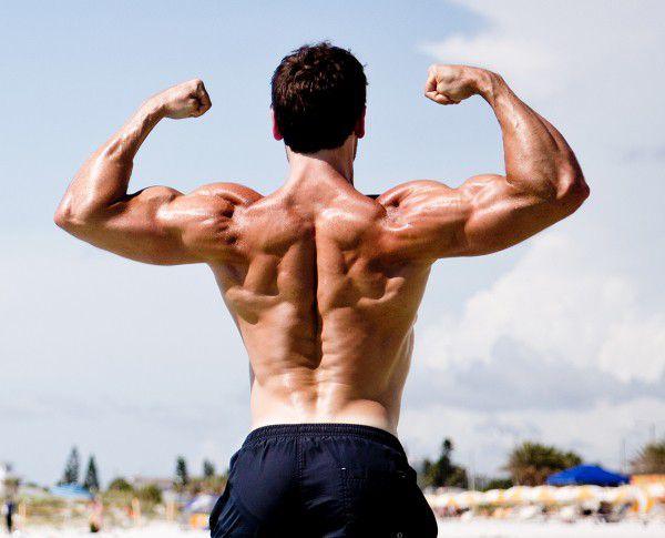 Chương trình tập tay tối ưu cho cơ bắp tay to Thể Hình Channel