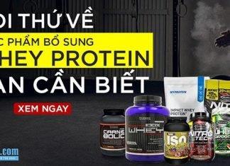 Whey Protein là gì ?Mọi thứ về Whey Protein bạn cần biết trước khi dùng