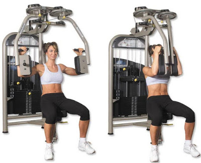 Pec Deck Machine (Machine Chest Fly)