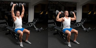 BàiSeated Dumbbell Shoulder Press