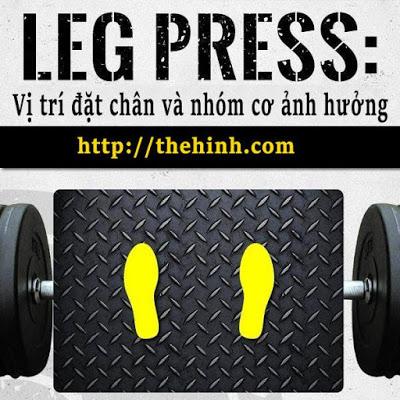 Vị trí đặt chân khi tập Leg Press