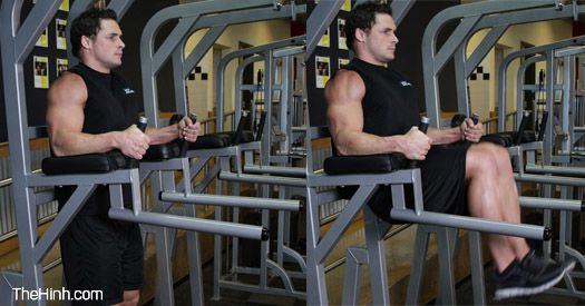 Knee/Hip Raise On Parallel Bars