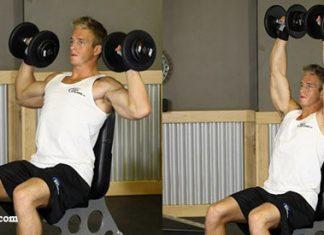 Seated Dumbbell Press - Ngồi đẩy tạ tập vai giữa cho nam