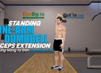 Bài tập tay sau Triceps Extension cho cánh tay to vạm vỡ