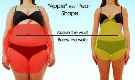 Nếu tỉ lệ eo-mông lớn, bạn đang sở hữu thân hình quả táo. Nếu tỷ lệ eo-mông nhỏ, bạn sở hữu thân hình quả lê