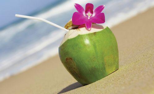 Uống nước dừa có chất béo hòa tan giúp đốt mỡ tốt hơn