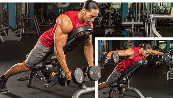 Incline Dumbbell Rear Delt Fly