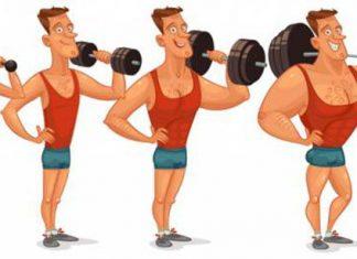 Lịch tập tăng cân tăng cơ cơ nam giúp bạn lên cân hiệu quả