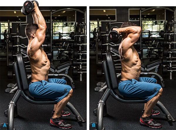 Seated Reverse Grip Overhead Dumbbel Triceps Extension - Ngồi co duỗi tay sau.