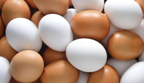 Trứng là nguồn năng lượng dồi dào mà không gây tăng cân