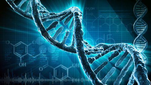 Không tăng cân được có thể bị yếu tố di truyền