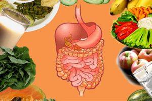 Hệ tiêu hóa kém khiến hấp thụ dinh dưỡng kém