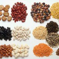 Protein thực vật có rất nhiều trong các loại đậu