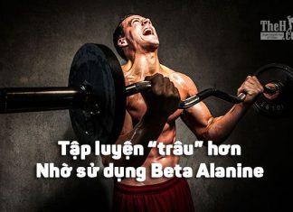 Beta Alanine là gì ? Cách tập gym xung hơn, tăng sức chịu đựng hơn