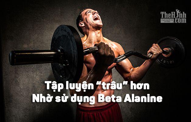 Beta Alanine là gì ? Cách tập gym sung hơn, tăng sức chịu đựng hơn