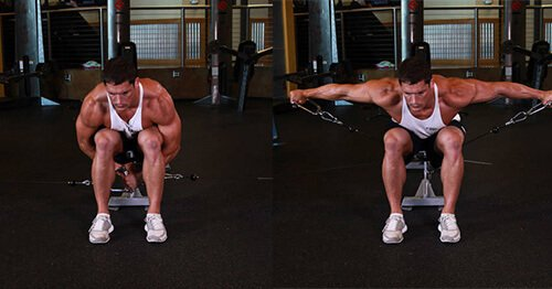 Cable Seated Rear Lateral Raise