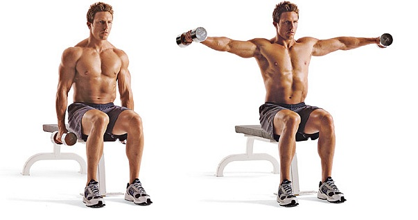 Seated Side Lateral Raise