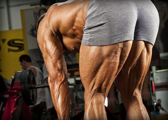 10 bài tập chân sau cho nam hoàn hảo để giúp cơ thể cân đối hơn