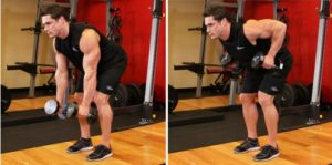 bent over dumbbell row