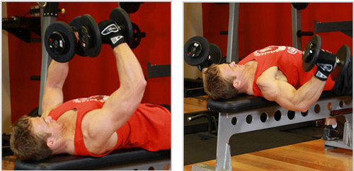 Flat Bench Fly