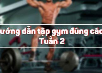 Hướng dẫn tập gym đúng cách tuần 2