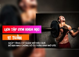 Lịch tập gym khoa học cho nam trong 12 tuần - Tuần 7
