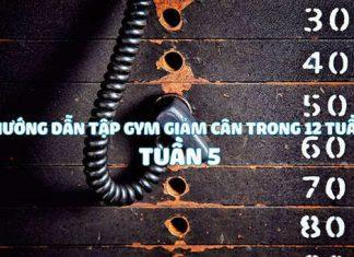 Hướng dẫn tập gym giảm cân hiệu quả trong 12 tuần - Tuần 5