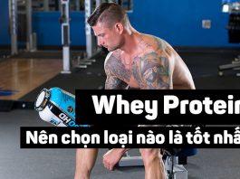 Nên mua loại Whey Protein nào là tốt nhất cho các Gymer ?