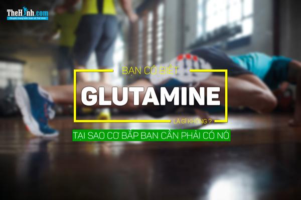 Glutamine là gì ? Cách sử dụng Glutamine như thế nào cho chuẩn ?