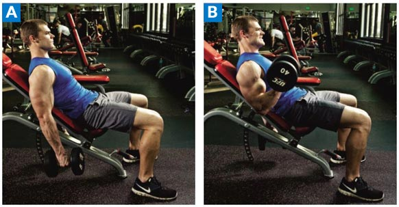 Incline Inner Biceps Curl