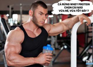 Nên chọn Whey Protein nào để phù hợp nhu cầu và kinh tế nhất ?