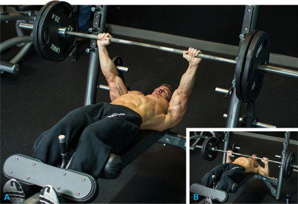 Decline Barbell Press - Đẩy tạ với ghế nghiêng xuống