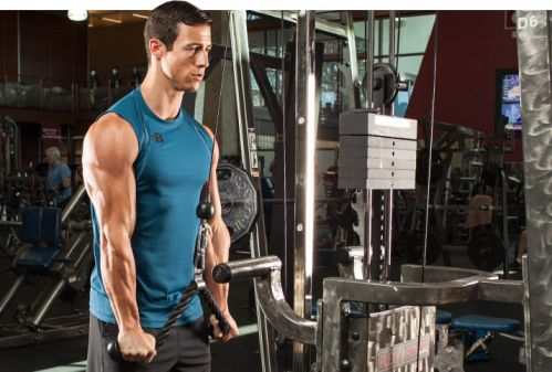 Triceps Pushdowns
