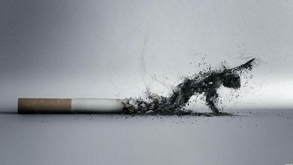 Những cách cai thuốc lá hiệu quả nhất để bảo vệ cơ bắp của bạn