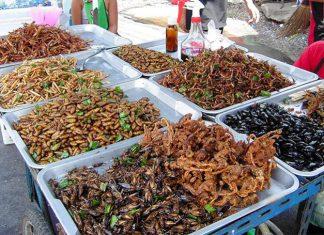 Bổ sung protein từ côn trùng, nguồn protein dồi dào ít người để ý tới