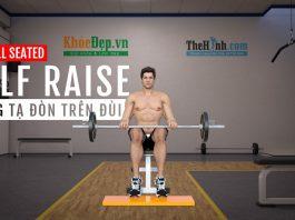 Barbell Seated Calf Raise - Bài tập bắp chuối to và hiệu quả nhất