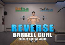 Reverse Barbell Curl - Tập tay trước với bài cuốn tạ ngược tay