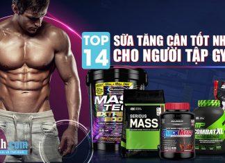 Top 14 sữa tăng cân cho người gầy tập gym tốt nhất