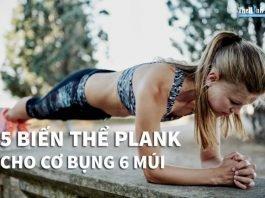 5 Bài tập plank giảm mỡ bụng nhanh và hiệu quả nhất mà bạn phải biết