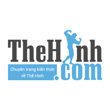 Logo The Hinh Channel