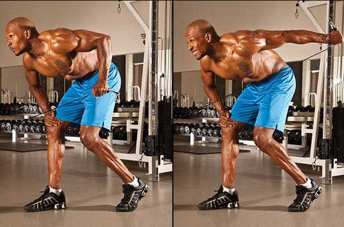 Triceps Cable Kick back