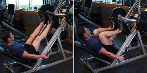 High Stance Leg Press