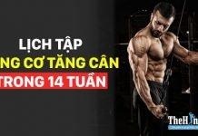 Lịch tập gym tăng cân cho nam 6 buổi 1 tuần trong 14 tuần (P2)