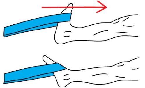 Bài tập cho cổ chân khỏe, chịu lực tốt hơn khi tập luyện