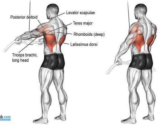 Straight-Arm Pulldown - Đứng tập lưng xô với máy kéo cáp