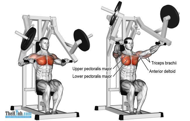 Machine Press - Bài tập ngực giữa hiệu quả cho nam