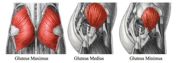 Hội chứng mông chết là gì ? Nguyên nhân và cách khắc phục