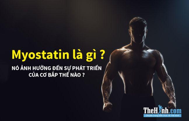 Myostatin là gì ? Căn bệnh mà gymer nào cũng muốn được mắc phải!