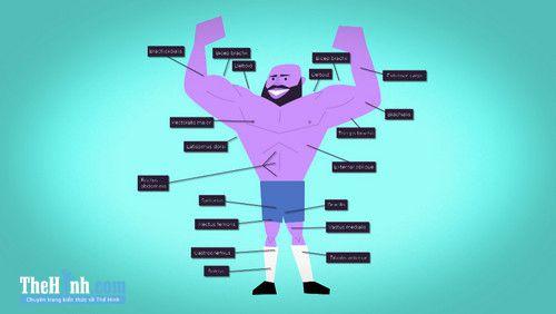 Cách làm tăng cơ bắp nhanh nhất đơn giản đến không ngờ!