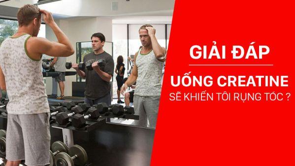 Rụng tóc ở nam giới khi tập gym là do dùng Creatine ? Thể Hình Channel